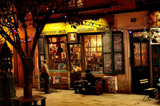 Shakespeare-and-Company-in-Paris-540x359